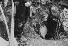 Photo of L'orrore delle Foibe e l'impegno del Sen. Franco Servello per ricordarle
