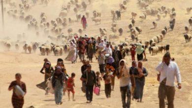 Photo of L'ONU afferma che il cambiamento climatico può essere causa di asilo