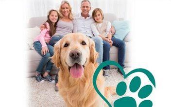 Photo of Una zampa in famiglia: il progetto che i veterinari italiani portano nelle scuole