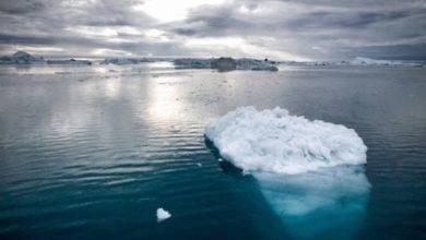Photo of 600 miliardi di tonnellate di ghiaccio sciolti in Groenlandia alzano gli oceani di 2,2 millimetri