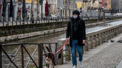 Photo of Gli animali domestici non trasmettono il Covi-19: le dieci raccomandazioni dell'Associazione Nazionale dei Veterinari Italiani