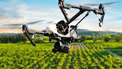 Photo of Robot e droni garantiscono che la filiera agroalimentare non s'inceppi per mancanza di manodopera