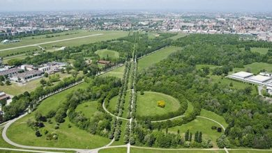 Photo of Nasce la Food Forest, il bosco edibile di Milano