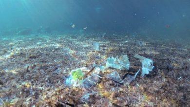 Photo of Per fronteggiare la pandemia, la plastica negli oceani potrebbe triplicarsi entro il 2040