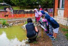 Photo of Aule Natura nei cortili delle scuole: un progetto da estendere in tutti gli Stati dell'UE